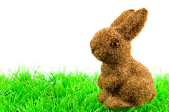 Bunny at green grass Stock Photography