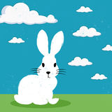 Bunny on green grass. Illustration of a little cute bunny on green grass with a bright blue sky Royalty Free Stock Image