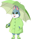 Bunny with green umbrella Royalty Free Stock Images