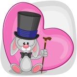 Bunny in hat Stock Photo