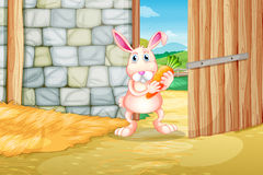 A bunny holding a carrot inside the barn Royalty Free Stock Images