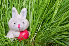 Bunny holding an Easter egg Royalty Free Stock Images