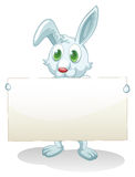 A bunny holding an empty banner Stock Photo
