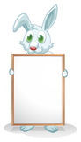 A bunny holding an empty board Stock Photography