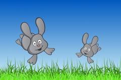 Bunny Hop Stock Image