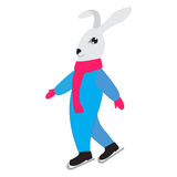 Bunny ice-skating, skater skating, vector illustration Royalty Free Stock Images
