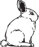 Bunny Illustration. Line Art Illustration of a Bunny stock illustration