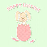 Bunny. Image of funny smiling bunny character with happy easter text on light green patterned background Stock Images