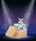 A bunny inside a box full of easter eggs Royalty Free Stock Images