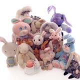 Bunny Land Stock Image