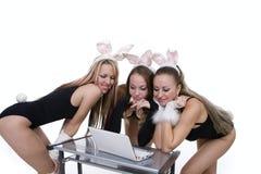 bunny lap-top αυτιών που κοιτάζει playgirls Στοκ φωτογραφία με δικαίωμα ελεύθερης χρήσης
