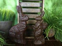 Bunny Love Lizenzfreie Stockfotos
