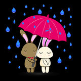 Bunny in love under pink umbrella in rainy season Royalty Free Stock Image