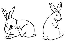 Bunny outlines Royalty Free Stock Photo