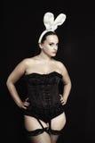 bunny playgirl προκλητικό Στοκ φωτογραφίες με δικαίωμα ελεύθερης χρήσης