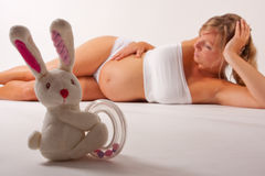 Bunny Posing With A Pregnant Woman Royalty Free Stock Photography