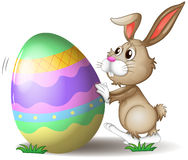 A bunny pushing an easter egg. Illustration of a bunny pushing an easter egg on a white background Stock Photos