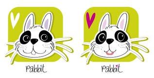 Bunny rabbit Royalty Free Stock Photo
