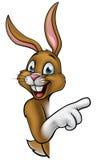 Bunny Rabbit Cartoon Royalty Free Stock Photography
