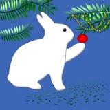 Bunny rabbit Christmas Royalty Free Stock Images