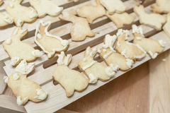 Bunny Rabbit Cookies Homestyle Baking Lizenzfreie Stockfotos