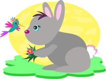 Bunny Rabbit and Hummingbird. Here is a cute Rabbit with her Hummingbird friend Stock Photography