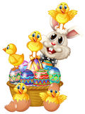Bunny rabbit and little chicks stock photos