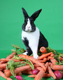 Bunny Rabbit on Pile of Vegetables Stock Photography