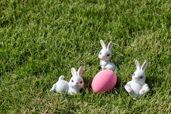Bunny rabbit pink easter egg Stock Photography