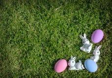 Bunny rabbit pink easter egg Stock Photo