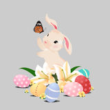 Bunny rabbit playing with butterfly and Easter eggs, isolated image. Bunny rabbit playing with butterfly and Easter eggs in grass field, isolated image Stock Images