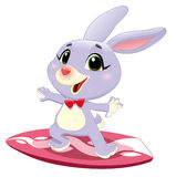 Bunny rabbit with surf. Royalty Free Stock Image