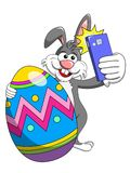 Bunny or rabbit taking selfie photo smartphone with decorated egg easter isolated. On white royalty free illustration
