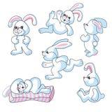 Bunny rabbits Royalty Free Stock Photography