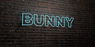 BUNNY -Realistic Neon Sign on Brick Wall background - 3D rendered royalty free stock image. Can be used for online banner ads and direct mailers Royalty Free Stock Image