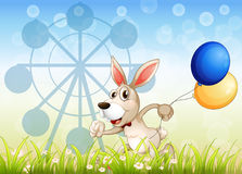 A bunny running in the garden with balloons Royalty Free Stock Image