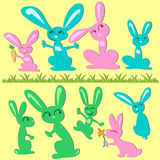 Bunny set Royalty Free Stock Photos
