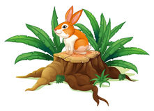 A bunny sitting on a stump with green leaves Stock Photo