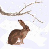 Bunny in the snow christmas theme vector Stock Photography