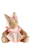 Bunny stuffed. Stuffed bunny in pink dress isolated on white Royalty Free Stock Image