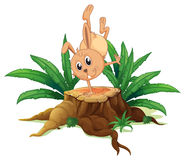 A bunny on a stump with leaves Royalty Free Stock Photos