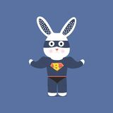 Bunny Superman Fotografia Stock