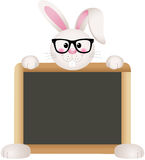 Bunny Teacher with School Board