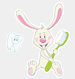 Bunny and toothbrush Stock Images