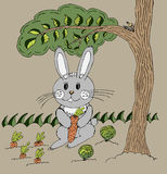 Bunny under tree Stock Photos