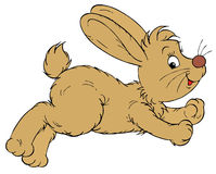 Bunny (vector clip-art) Stock Images