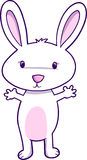 Bunny Vector Illustration Stock Image
