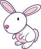 Bunny Vector Illustration Royalty Free Stock Photos