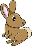 Bunny Vector Illustration. Brown Bunny Rabbit Vector Illustration Royalty Free Stock Images