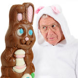 Bunny Vs bunny Imagem de Stock